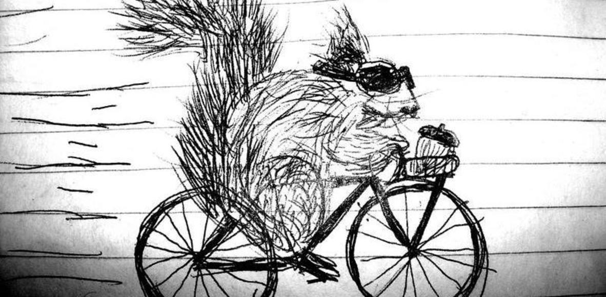 Black Squirrel Cycling League
