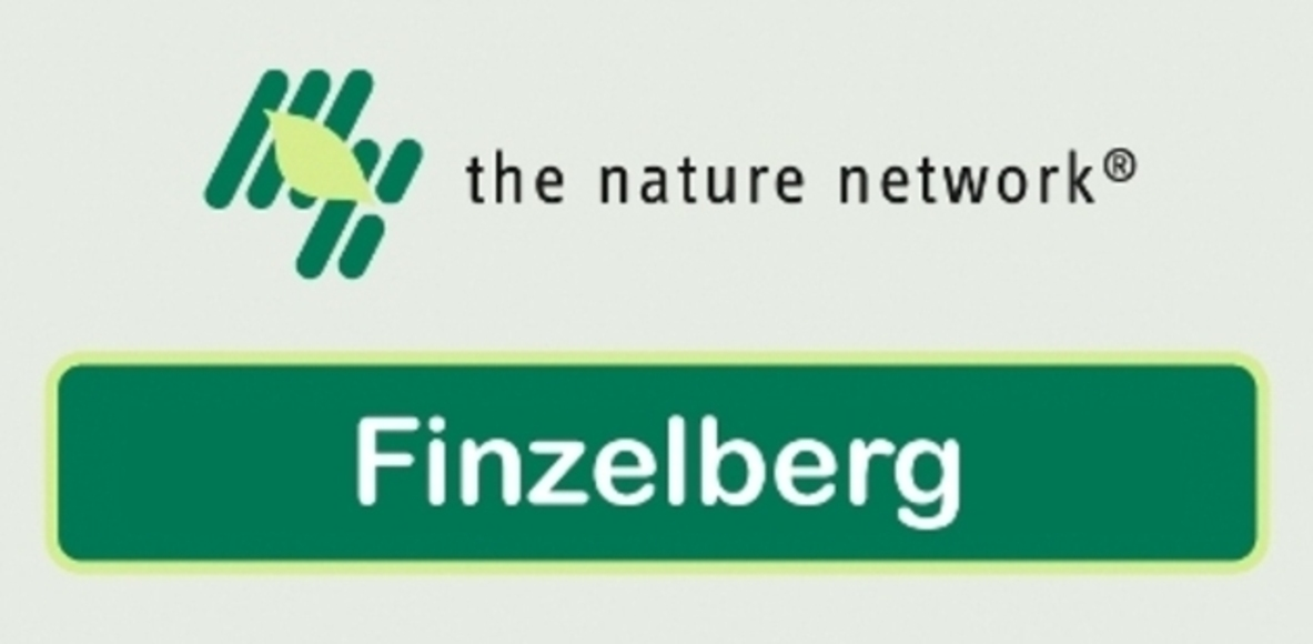 Finzelberg