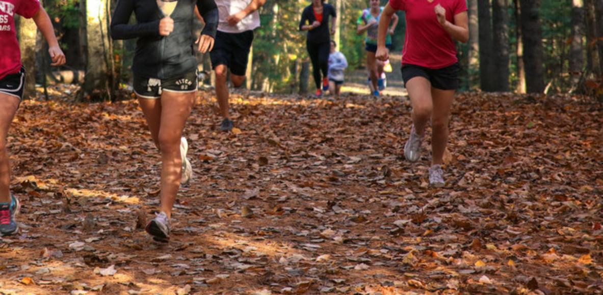 Marsh Island Trail Runners