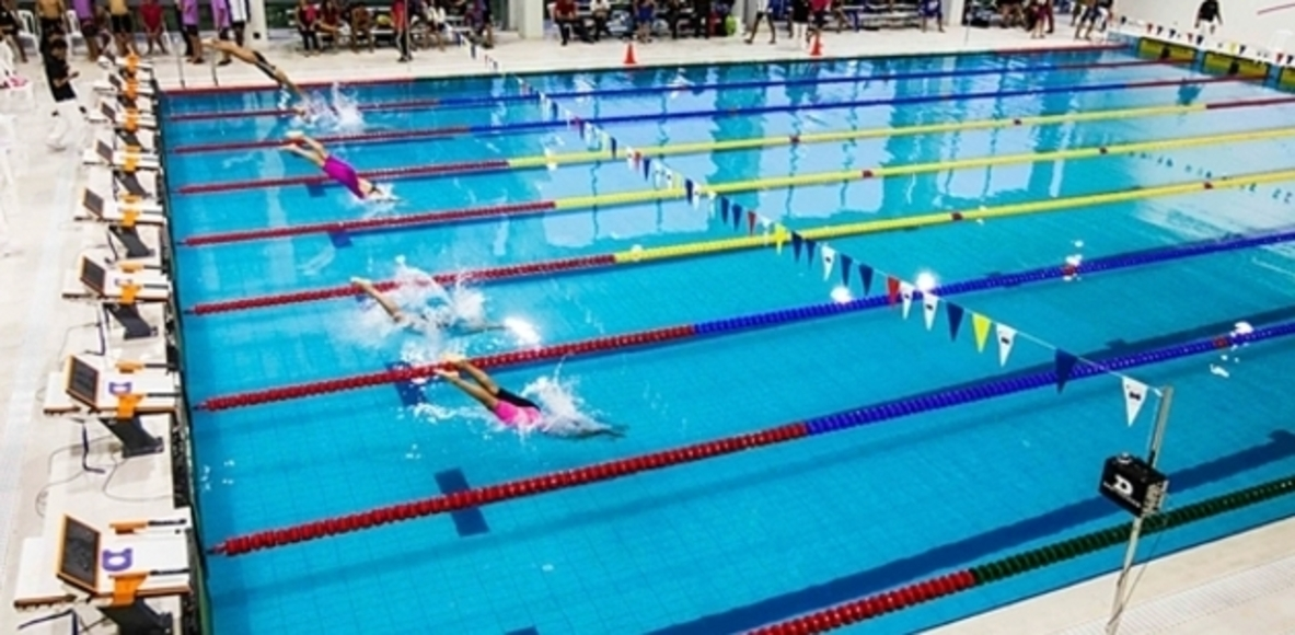 Nadadores MX