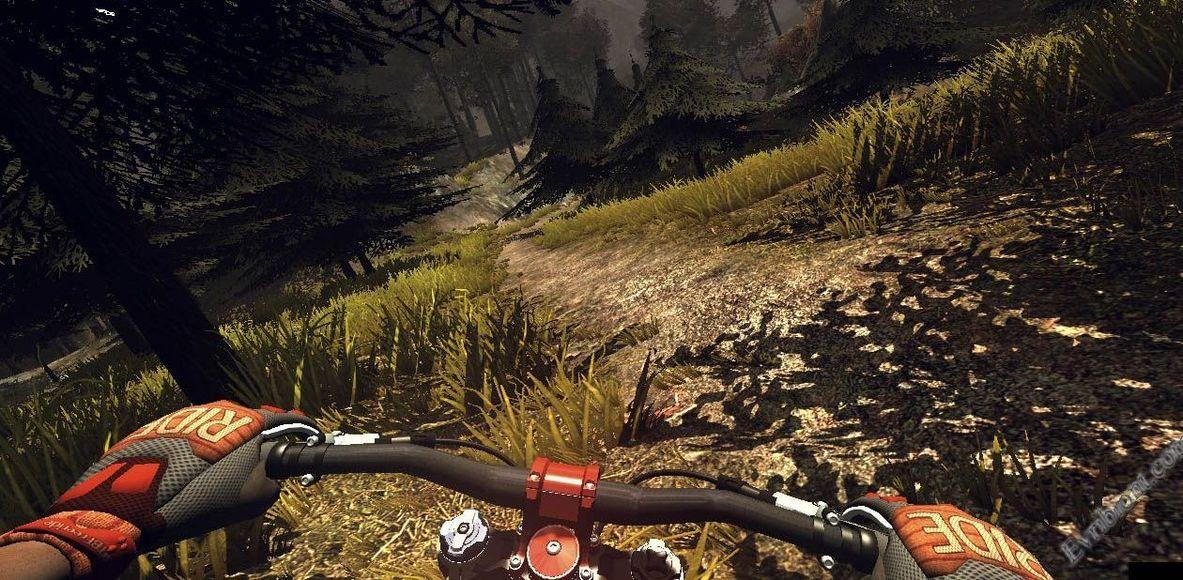 Bikers Tartaruga