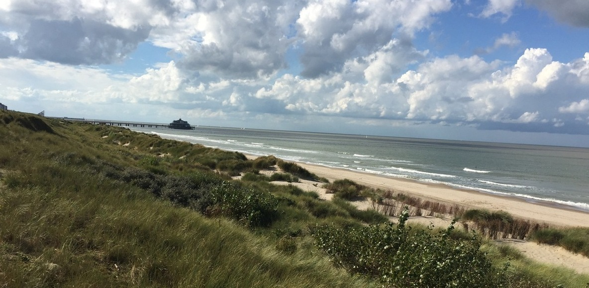 Belgian Coast Runners