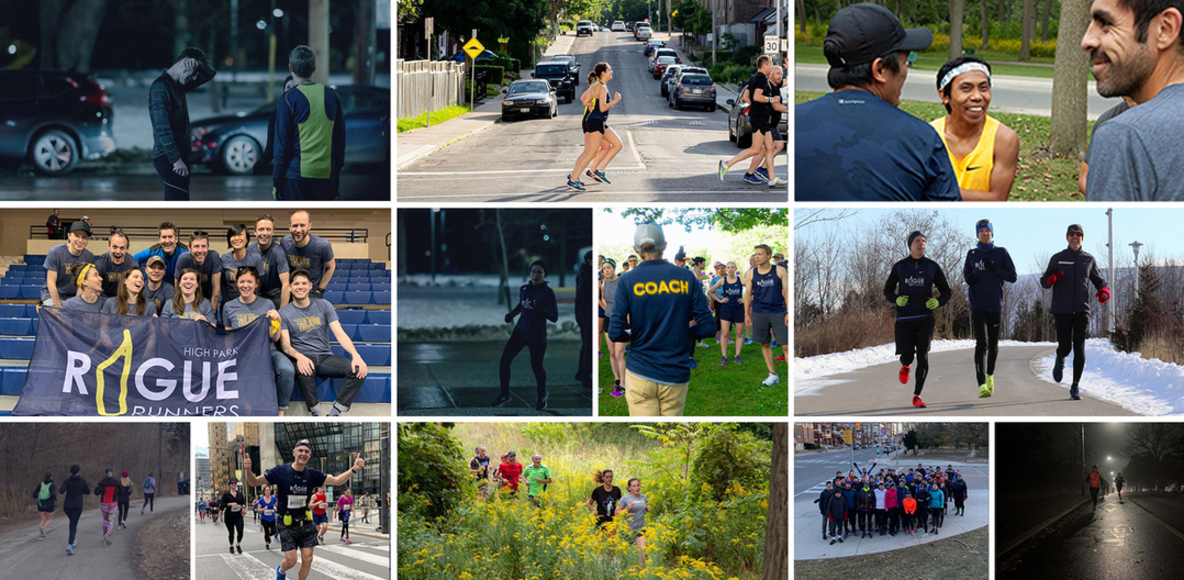 High Park Rogue Runners
