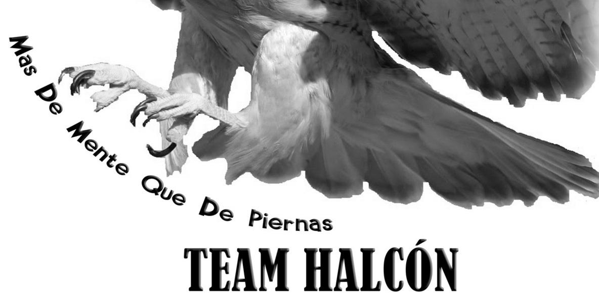 Team Halcon