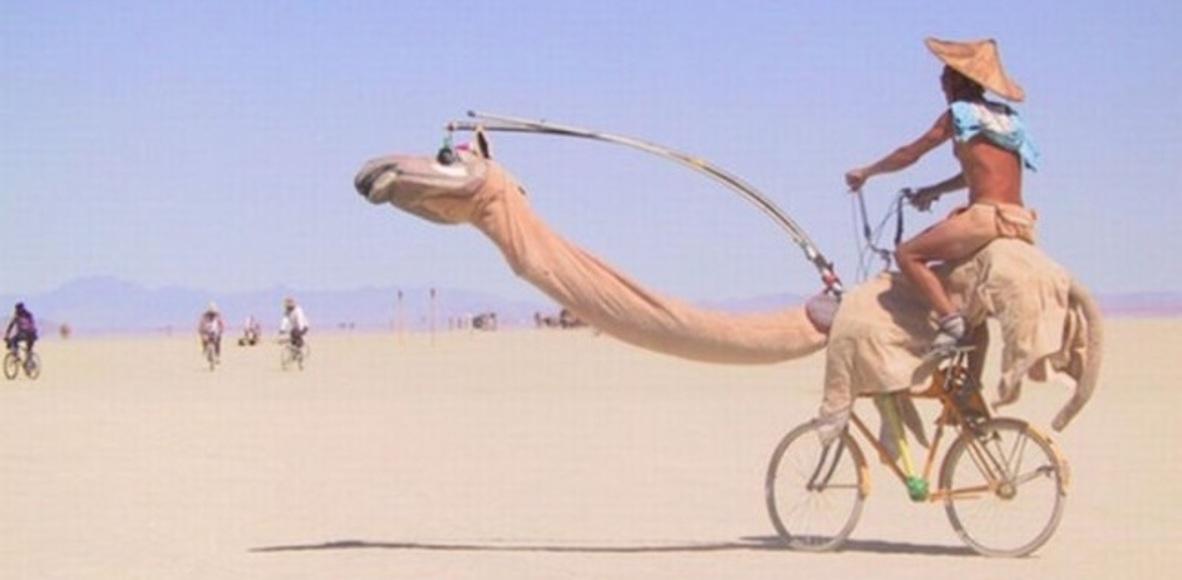 CAMELS BIKERS