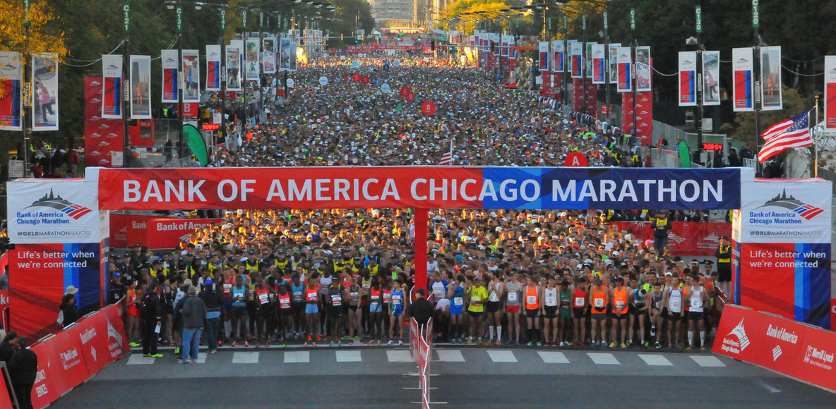 2019 Chicago Marathon and Alumni