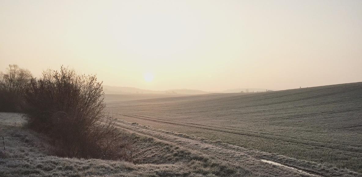 Laufen im Odenwald