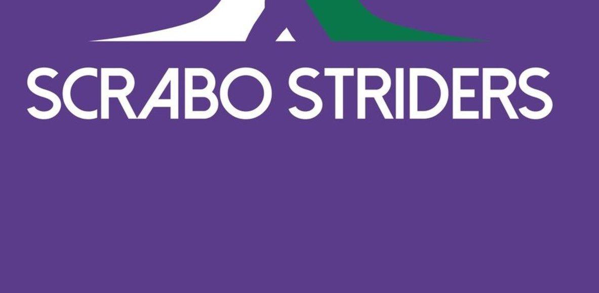 Scrabo Striders