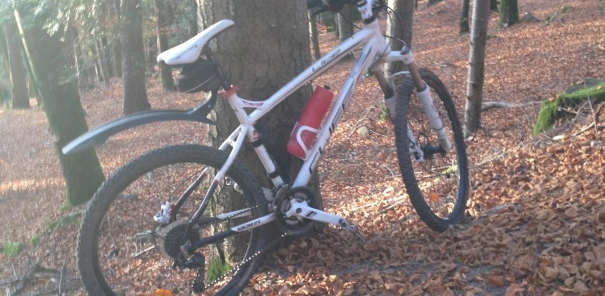 bike vosges 475