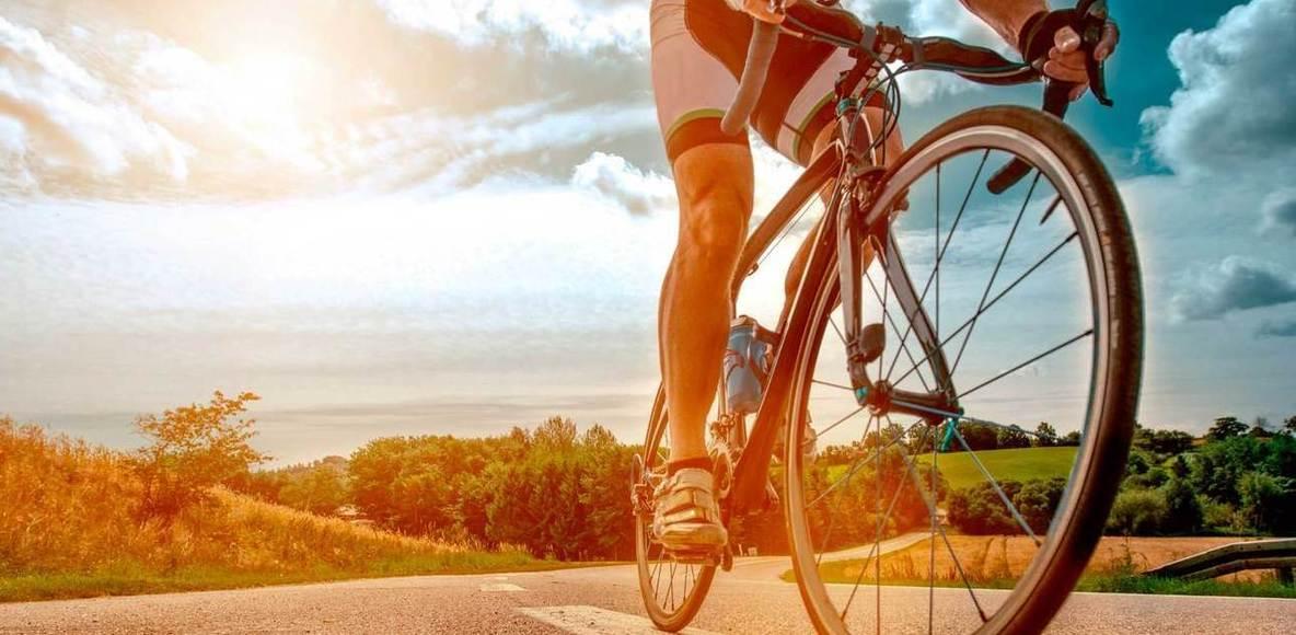 Seleta Bikers
