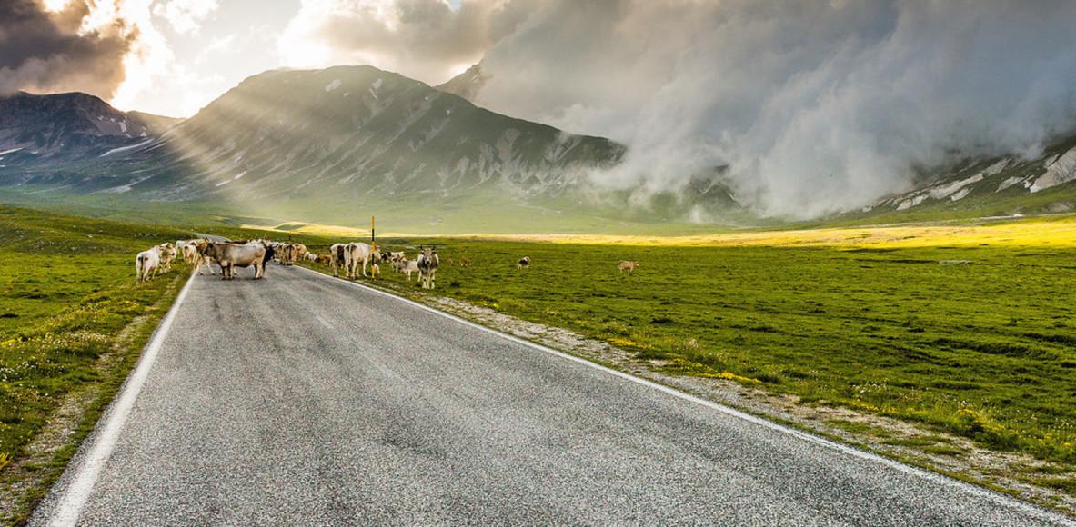 Abruzzo on the road