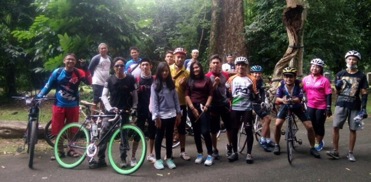 Lets Gowes