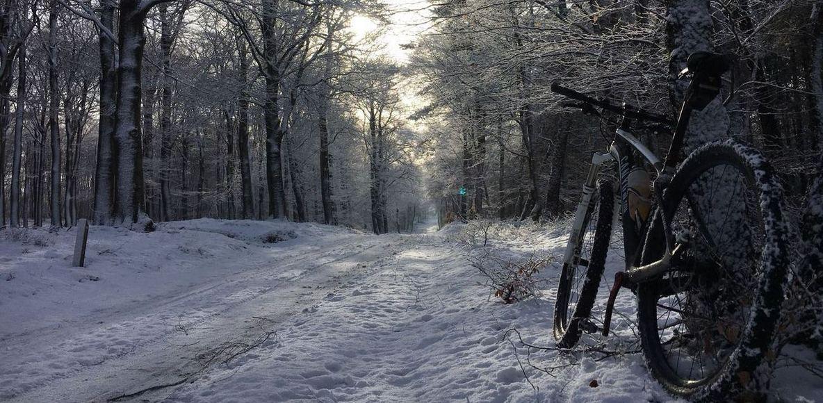 RETO MTB Winter Bos Tocht