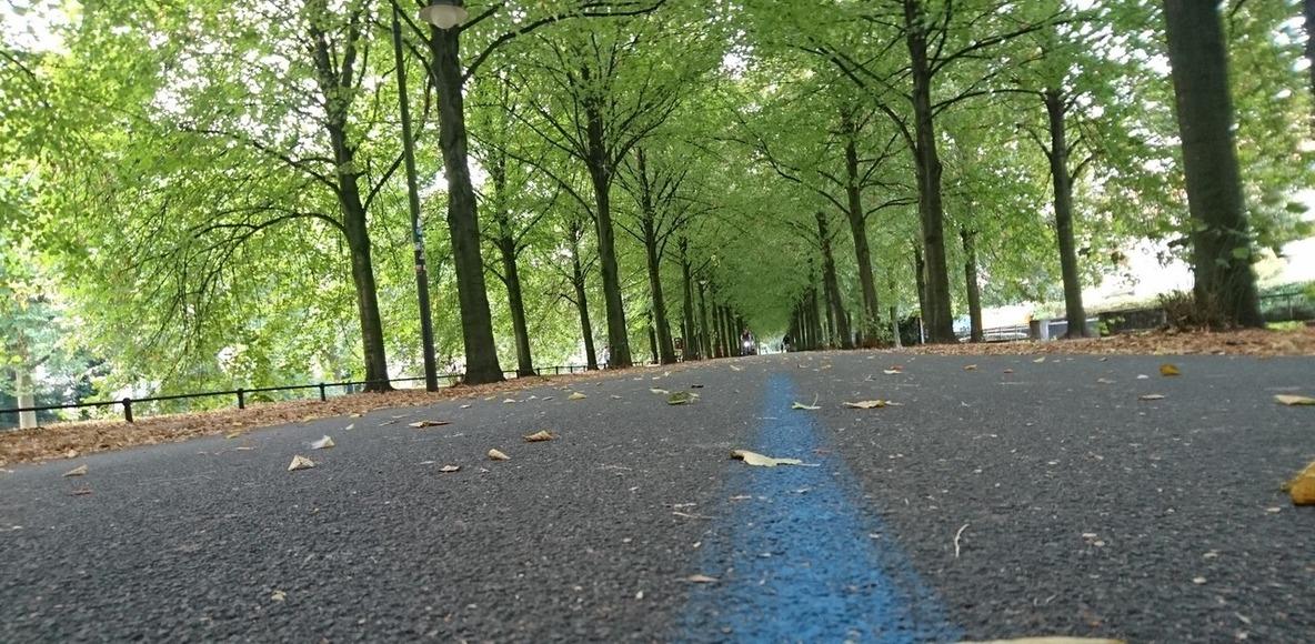Swim.Bike.Run.Live Münster