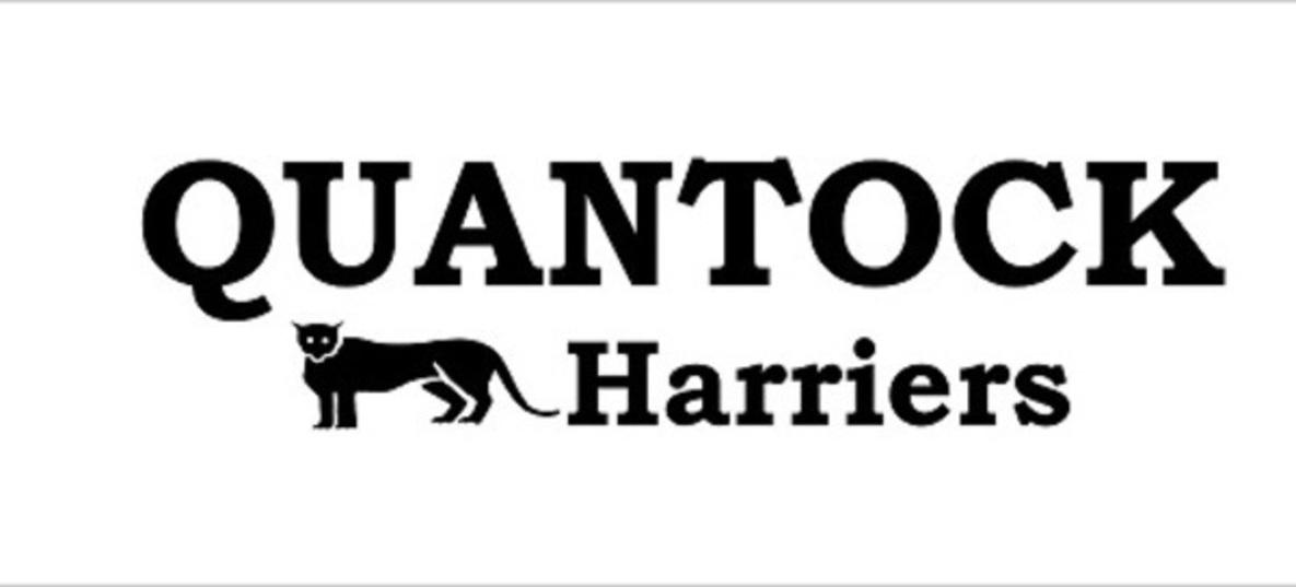 Quantock Harriers