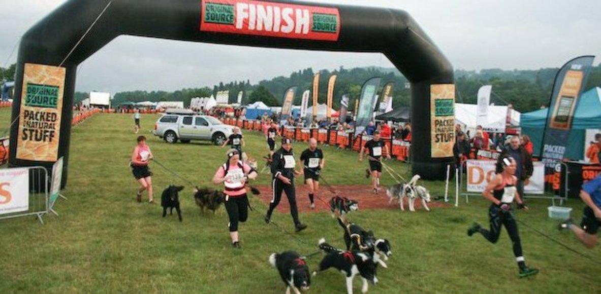 K9 Trail Sports