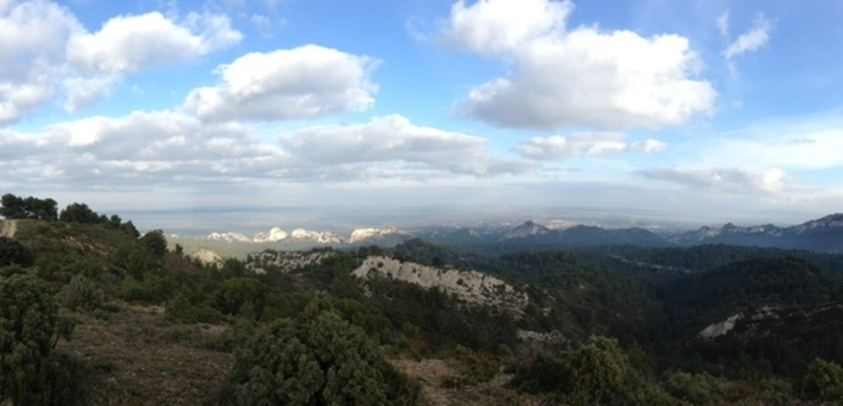 Run In Alpilles