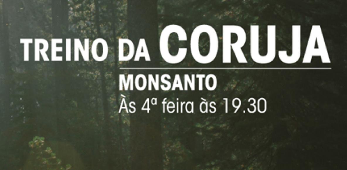 TREINO DA CORUJA