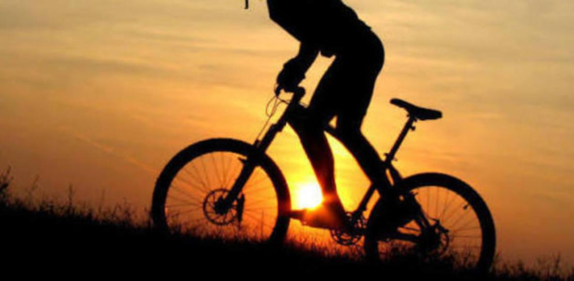 Irmãos Em Bike