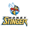 Honey Stinger Run Team