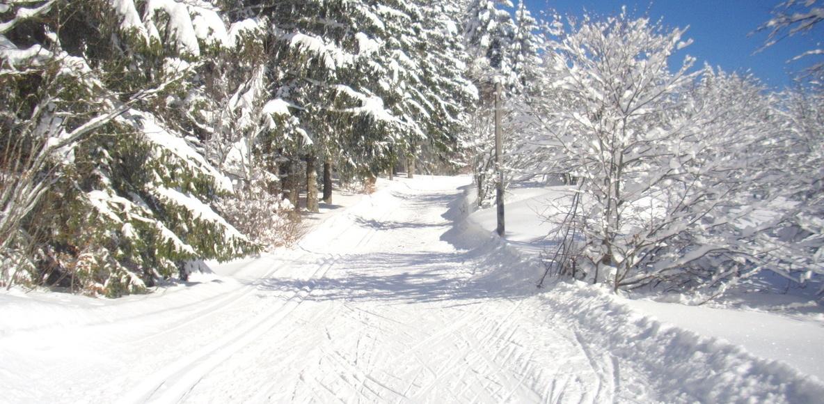 Vosges ski de fond