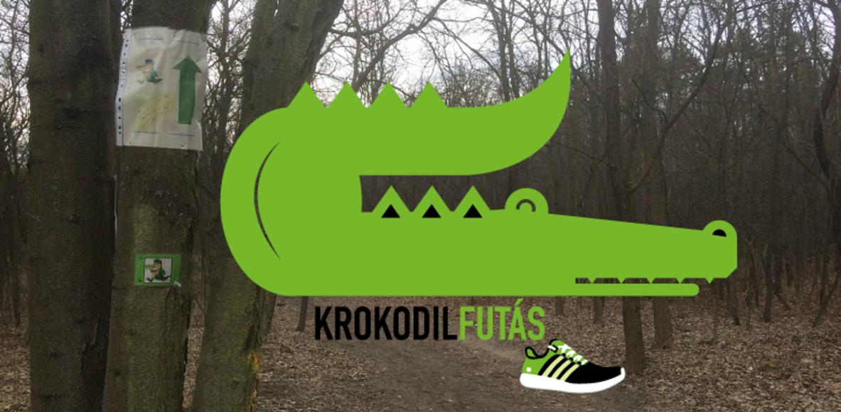 Krokodilfutas