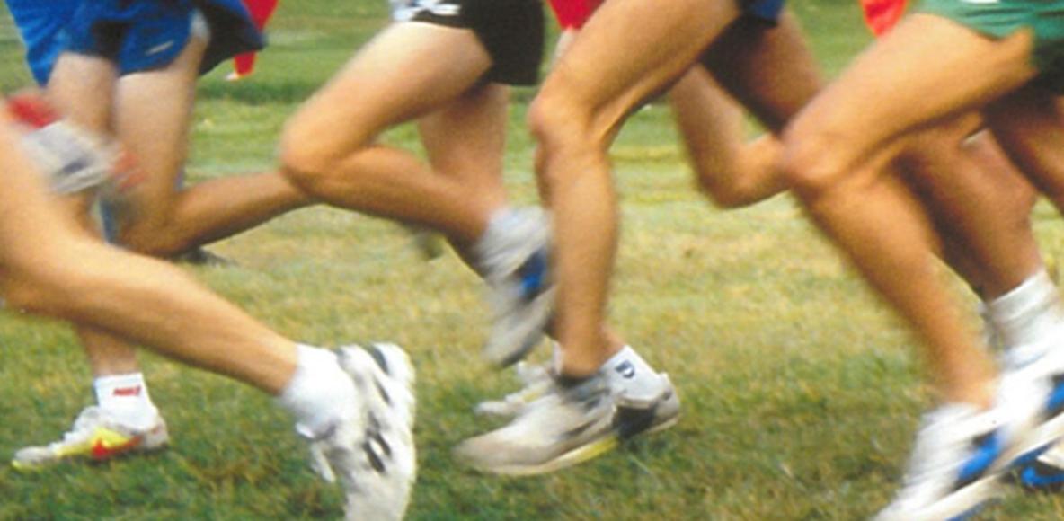 Basshead Runners