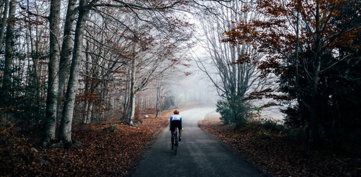 HiQ Cyclists