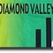 Diamond Valley Athletics Club
