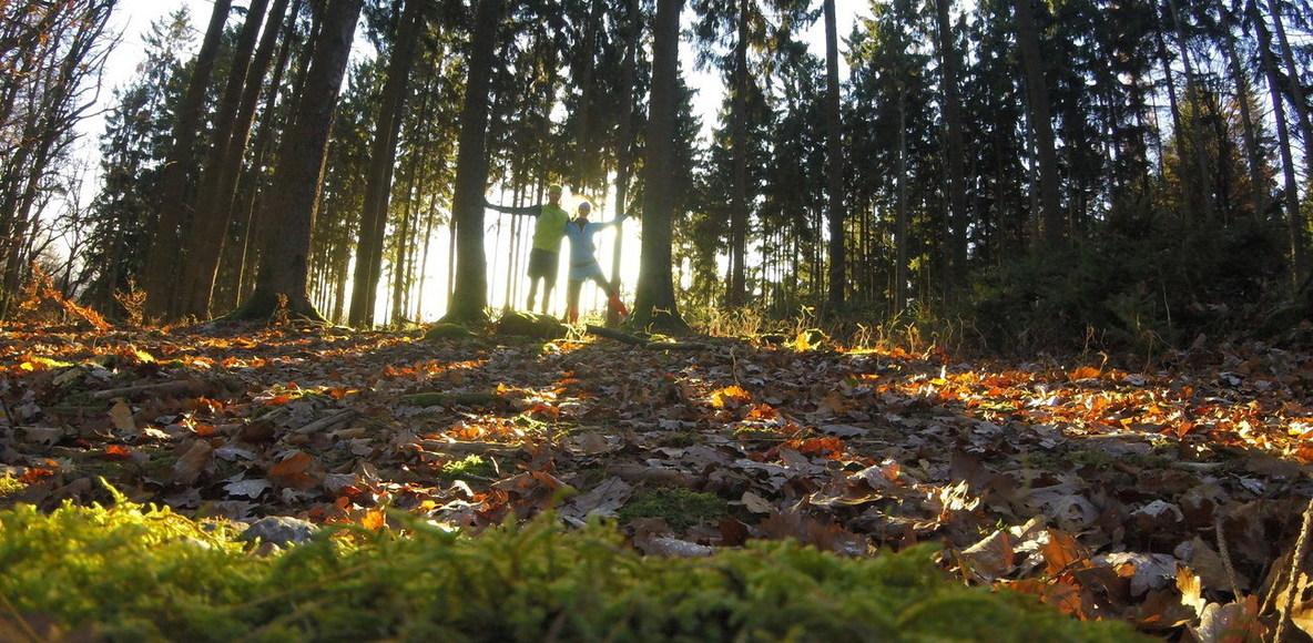 SALOMON Trailrunning - Taunus