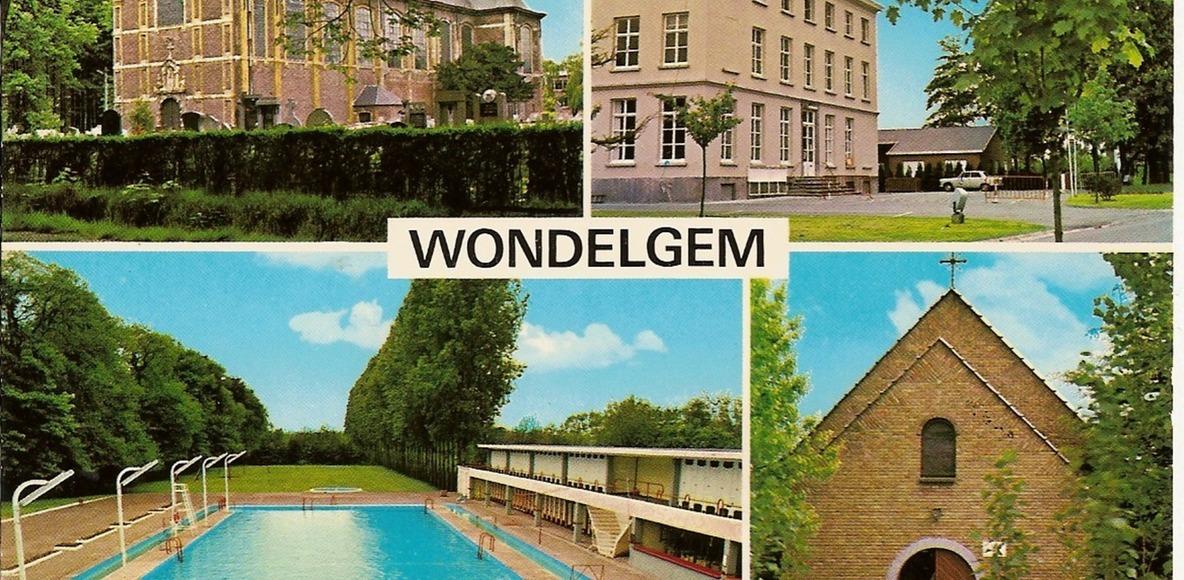 Wombats van Wondelgem
