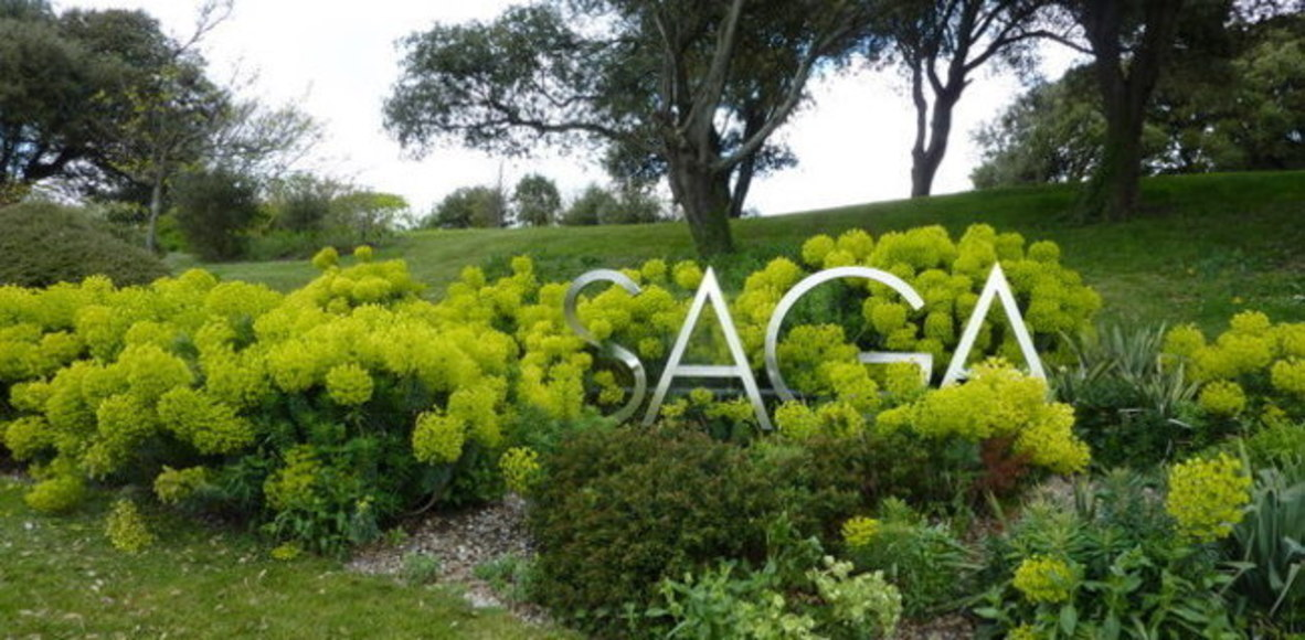 Saga Virtual Running Club