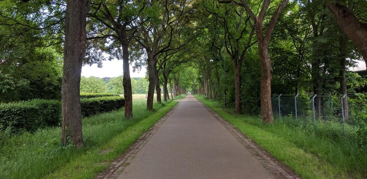 Langenhagen Runners