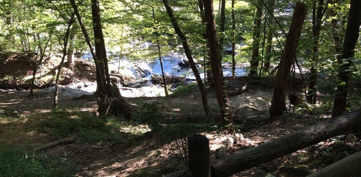 Sweetwater Creek Runners