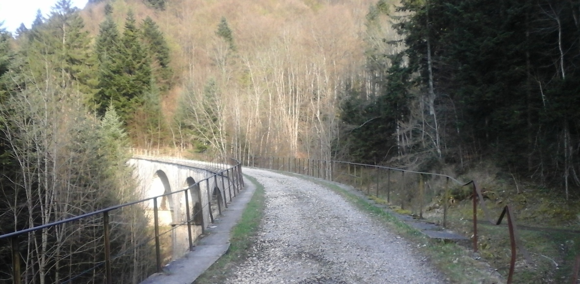 Team Trail Aix-Les-Bains Le Revard