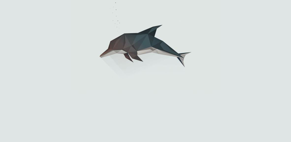 Dolphin Cycling Club