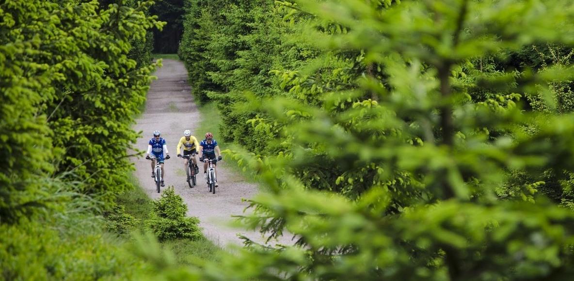 BONAZZI Bike-Team Zell