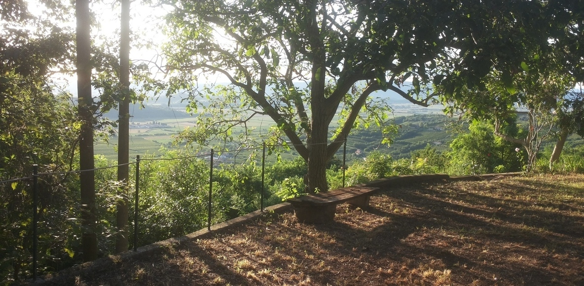 Monte Comun - Percorsi