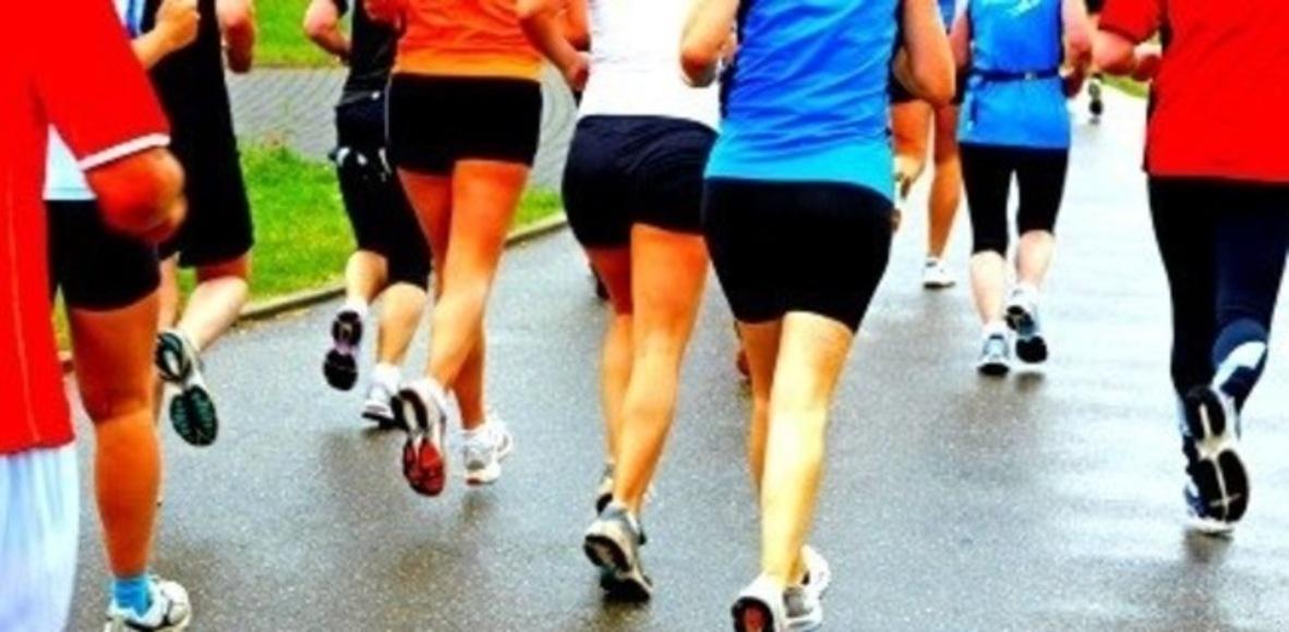 Newton N.H. Road Runners