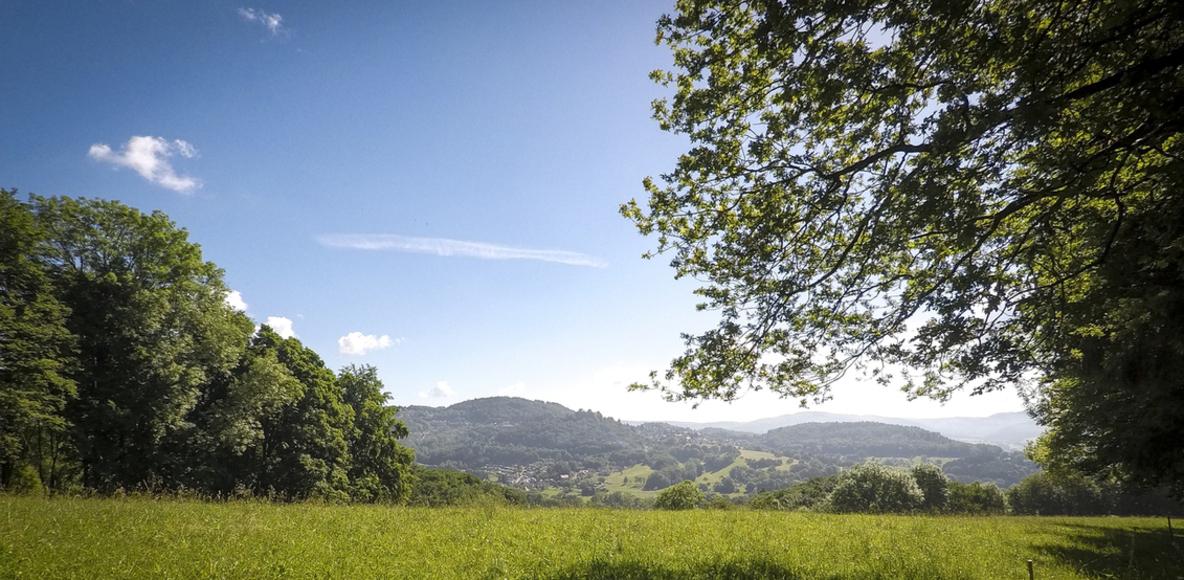 Trailrunning Odenwald