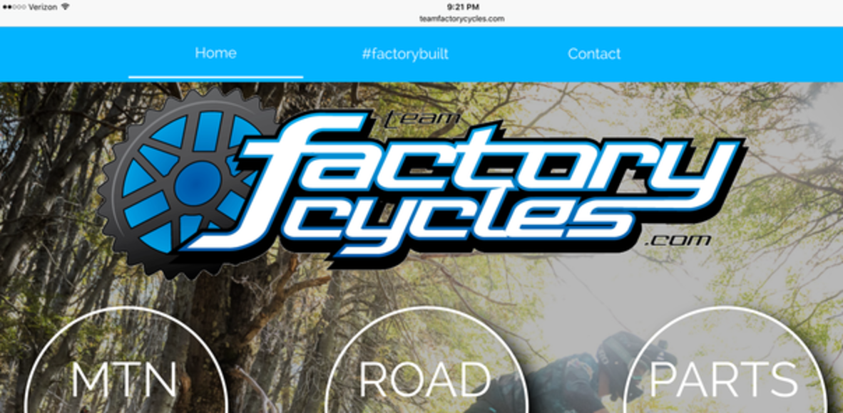 Team Factory Cycles