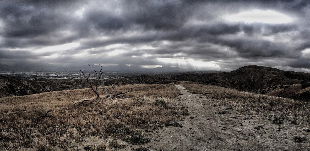Healthy Loma Linda