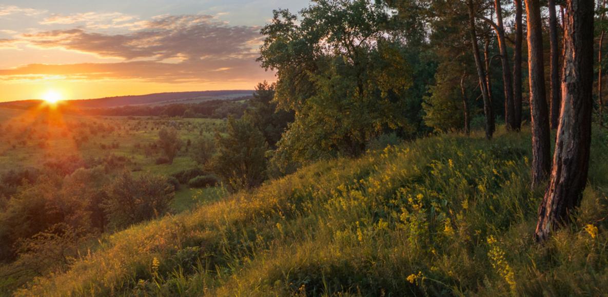 Horodyshche, Cherkasy Oblast, Ukraine