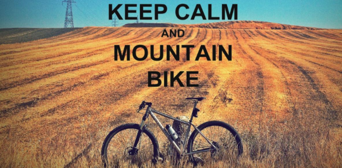 Arpía Bikers FACtory