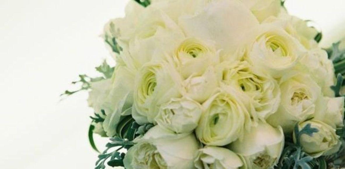 白いラナンキュラスの花言葉は純潔