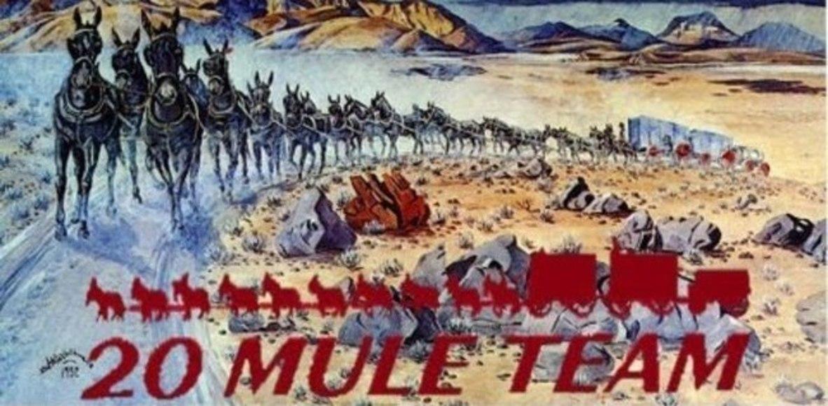 Twenty-mule Team