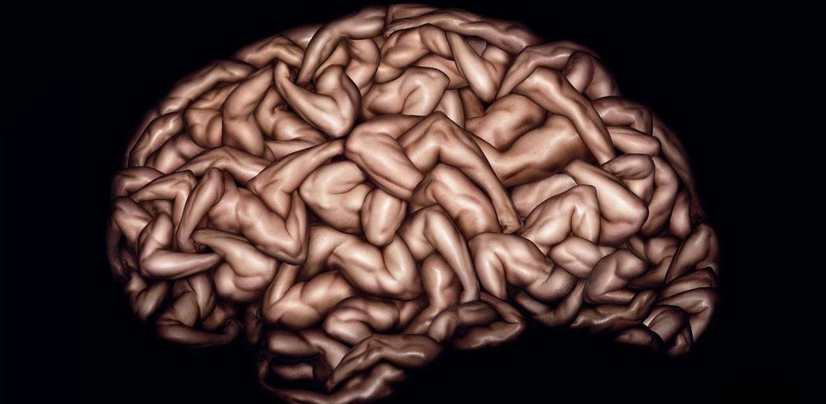 Мозг мужчины прикольные картинки
