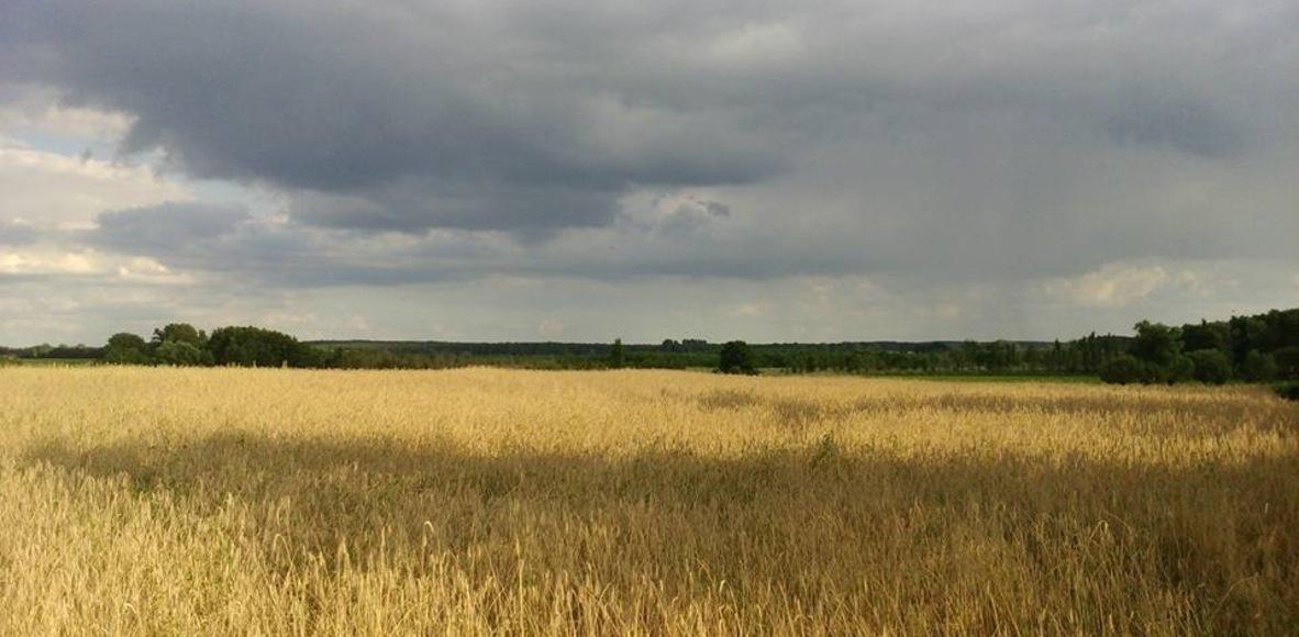 Strava Havelland