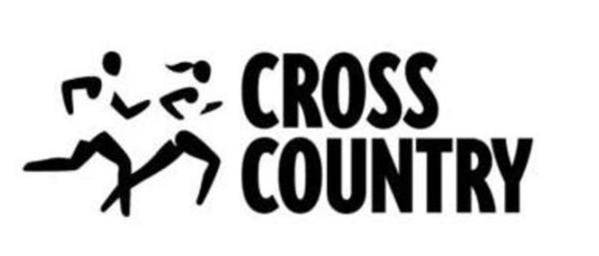 LakeVille Cross Country