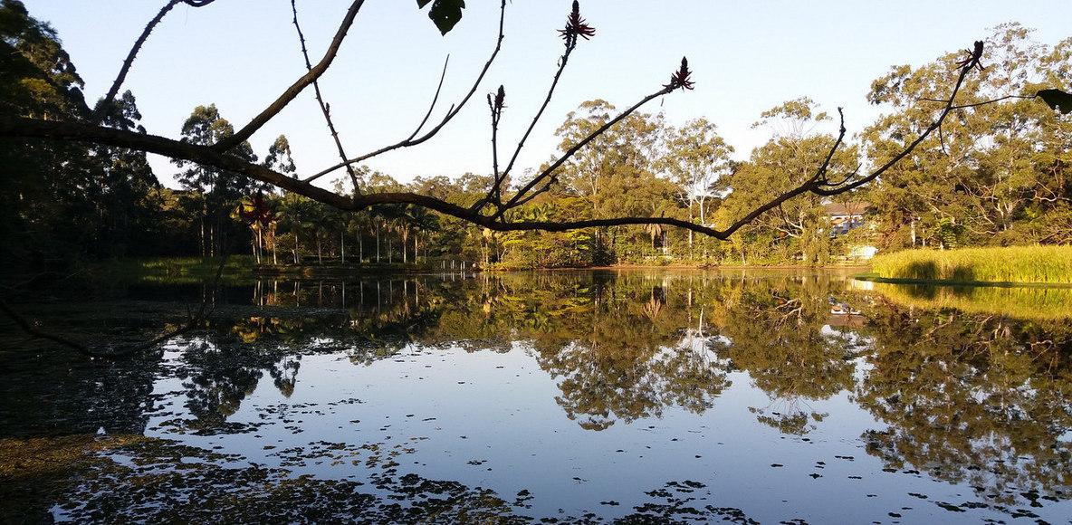 Corredores Strava no Laguinho de Interlagos
